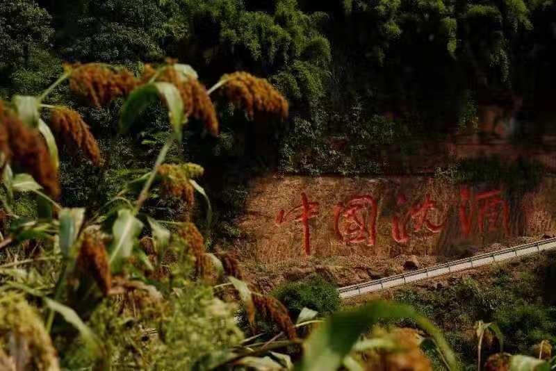 视频|耗资1.8亿,叙永有个藏在深山里的中国名酒庄